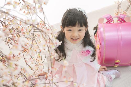 さくら咲く撮影会イベント開催