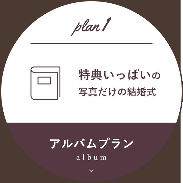 アルバムプラン