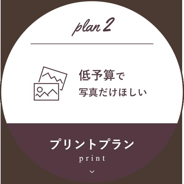 プリントプラン